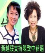 黃睿靚專訪黃越綏談支持陳致中參選立委|台灣e新聞