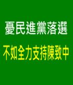 憂民進黨落選 不如全力支持陳致中 |台灣e新聞