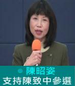 支持陳致中參選|◎陳昭姿|台灣e新聞