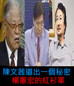陳文茜道出一個秘密:楊憲宏的紅衫軍|台灣e新聞