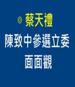 陳致中參選立委面面觀∣作者: 蔡天禮|台灣e新聞