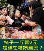 柿子一斤2元,   是誰在糟蹋農民?|台灣e新聞