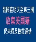 張國鑫明天至第三國放棄美國籍仍來得及挽救選情|台灣e新聞