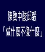 陳致中酸邱毅「做什麼不像什麼」|台灣e新聞