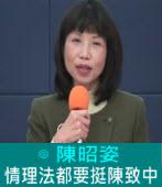 情理法都要挺陳致中∣◎ 陳昭姿 |台灣e新聞