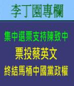 集中選票支持陳致中﹐票投蔡英文、終結馬桶中國黨政權| 李丁園專欄|台灣e新聞