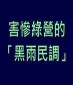 害慘綠營的「黑雨民調」|台灣e新聞