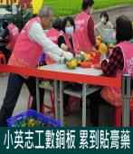 小英志工數銅板 累到貼膏藥 |台灣e新聞