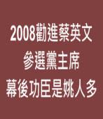 2008勸進蔡英文參選黨主席 幕後功臣是姚人多 |台灣e新聞