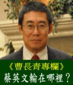 曹長青:蔡英文輸在哪裡?|台灣e新聞