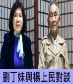 劉丁妹與楊上民對談|台灣e新聞