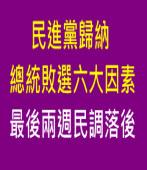民進黨歸納總統敗選六大因素 最後兩週民調落後|台灣e新聞