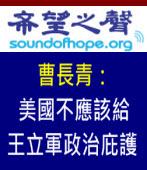《希望之聲》曹長青:美國不應該給王立軍政治庇護|台灣e新聞
