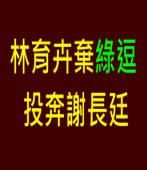 林育卉因理念不合閃辭綠逗 投奔謝長廷|台灣e新聞