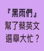 『黑雨們』幫了蔡英文選舉大忙? |台灣e新聞