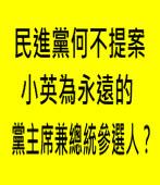 民進黨何不提案小英為永遠的黨主席兼總統參選人?|台灣e新聞