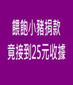 餵飽小豬捐款 竟接到25元收據|台灣e新聞