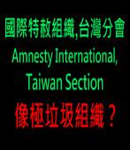 國際特赦組織台灣分會,像極垃圾組織?|台灣e新聞