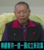 樂觀看待一邊一國成立新政黨|台灣e新聞