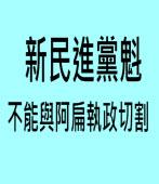 新民進黨魁 不能與阿扁執政切割|台灣e新聞