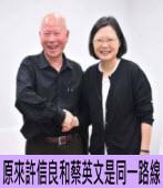 原來許信良和蔡英文是同一路線|台灣e新聞