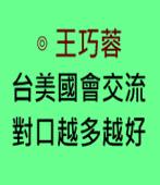 台美國會交流 對口越多越好 ∣◎ 王巧蓉|台灣e新聞