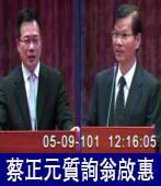 國民黨立委蔡正元質詢中研院院長翁啟惠 |台灣e新聞