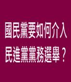 國民黨要如何介入民進黨黨務選舉?∣◎ jt|台灣e新聞