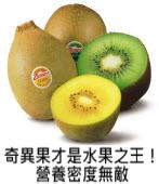 奇異果才是水果之王!營養密度無敵|台灣e新聞