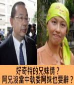 好奇特的兄妹情?阿兄沒當中執委阿妹也要辭?  |台灣e新聞