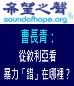 《希望之聲專訪》曹長青:從敘利亞看暴力「錯」在哪裡?|台灣e新聞