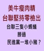 台聯三隻小螞蟻,勝過民進黨一堆小豬?|台灣e新聞
