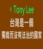 台灣是一個獨裁而沒有法治的國家∣ ◎Tony Lee|台灣e新聞