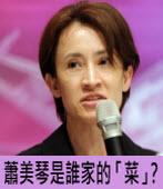 蕭美琴是誰家的「菜」?|台灣e新聞