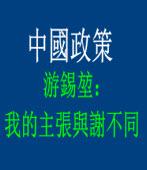 中國政策 游錫?:我的主張與謝不同|台灣e新聞