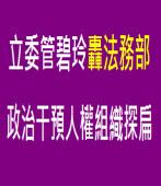 立委管碧玲轟法務部  政治干預人權組織探扁∣台灣e新聞
