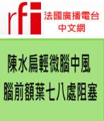 陳水扁輕微腦中風 腦前額葉七八處阻塞∣台灣e新聞