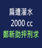 扁遭灌水2000cc  鄭新助抨刑求∣台灣e新聞