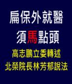 「扁保外就醫 須馬點頭」高志鵬立委轉述北榮院長林芳郁說法∣台灣e新聞