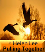 Pulling Together  ∣◎ Helen Lee∣台灣e新聞