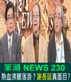 《笨湖 NEWS 230》熱血沸騰落淚?謝長廷真面目?|台灣e新聞