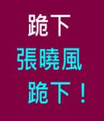跪下,張曉風,跪下!∣◎ 金恆煒∣台灣e新聞