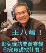 鄭弘儀訪問黃睿靚  你究竟想挖什麼?∣台灣e新聞
