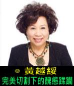 完美切割下的醜態蹂躪∣◎文╱黃越綏∣台灣e新聞