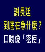 謝長廷到底在急什麼? 口吻像「密使」 ∣◎ 紀安秀∣台灣e新聞