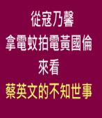 從寇乃馨拿電蚊拍電黃國倫來看蔡英文的不知世事∣文 /◎台獨基本教義 / 外獨會 |台灣e新聞