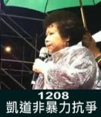 1208凱道非暴力抗爭∣台灣e新聞