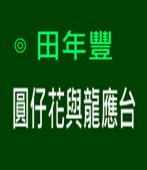 圓仔花與龍應台∣◎ 田年豐∣台灣e新聞