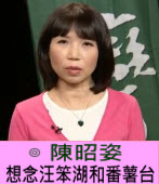 陳昭姿 :想念汪笨湖和番薯台∣台灣e新聞