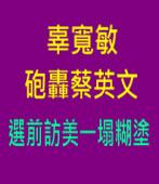 辜寬敏砲轟蔡英文 選前訪美一塌糊塗∣台灣e新聞